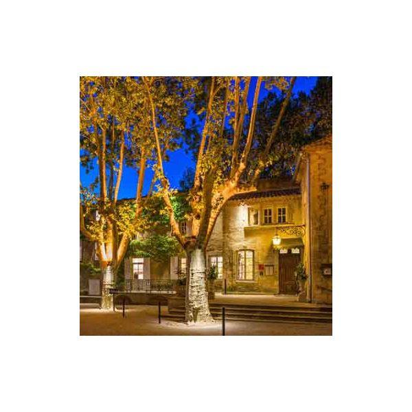 La Roque d'Anthon Festival 2020