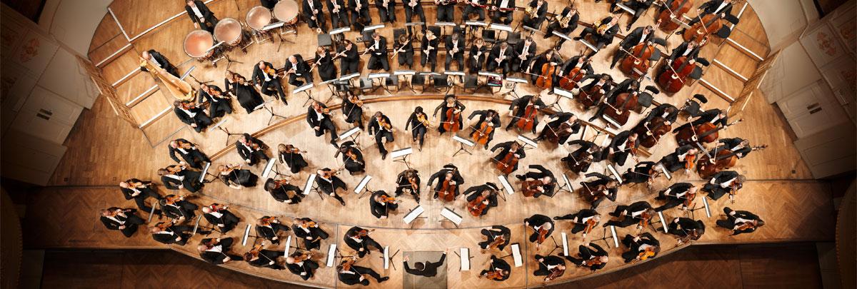 Wiener Symphoniker © Stefan Oláh